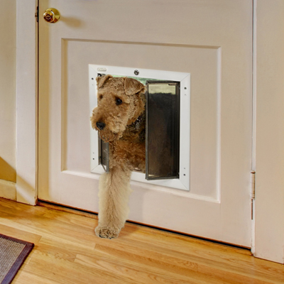 Pet Doors   Cheney Door Co. Kansas, Garage Doors, Openers, Entry Doors,  Storm Doors, Patio Doors, Retractable Screens, Windows, Gates, Gate  Operators, ...